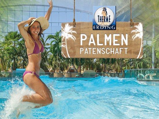 Therme Erding Palmenpatenschaft